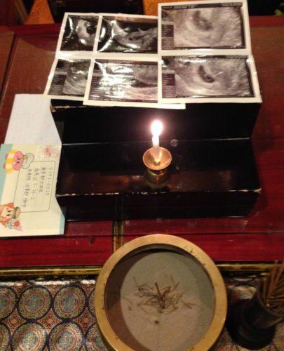 茨城県の方よりエコー写真とお手紙が届きました。