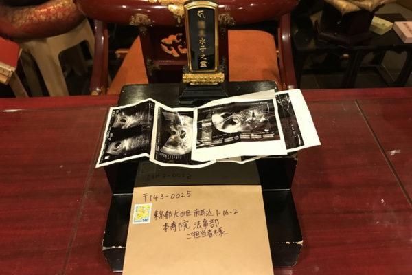 東京都の方よりエコー写真が3枚届きました